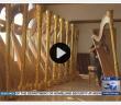 ABC 7 Lyon & Healy story